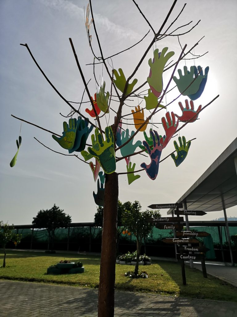 Growing up with Values from Storytelling - Portugal - February 2020 - Month of Affection - Tree of Values